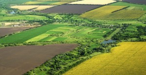 2B ve Hazine'ye ait tarım arazileri için son gün 7 Eylül 2017!