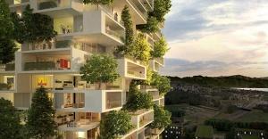 Şehrin ortasında 'ağaç apartman'!