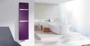 Zehnder'den bar ve spa seçenekli banyo tasarımları!