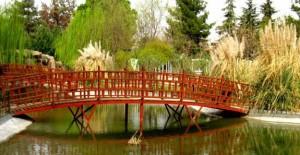 Gaziantep'in 'Yeni Botanik Bahçesi' 6. Küresel Botanik Bahçeleri'nde tanıtılacak!