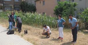 İzmit Belediyesi arazi çalışmalarını takip ediyor!