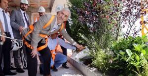 Türkiye'nin ilk dikey ormanı Kağıthane'de yükseliyor!