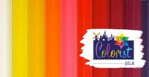 Colorist Şile'de 40 ay vade sıfır faiz kampanyası!