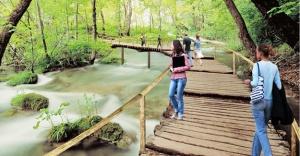Kocaeli'ne Avrupa'nın en büyük doğal yaşam parkı geliyor!