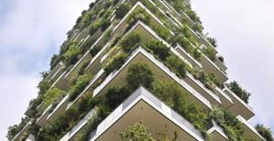 Hollanda'nın ilk dikey ormanı inşa edilecek!